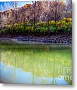 Reflection Of Beauty  Metal Print