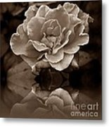 Reflection Of Fading Times Metal Print by Scott Allison
