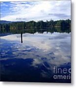 Reflection Of Natures Beauty Metal Print