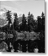 Reflection Of Trees And Mountains Metal Print