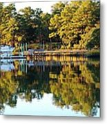 Reflection Of Trees Metal Print