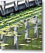 Reflection On The Pond Metal Print