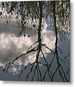 Reflection On Trees Metal Print