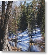 Reflection...in The Water Metal Print