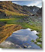 Reflections At The Mountain Lake Metal Print