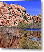 Reflections In Barker Dam By Diana Sainz Metal Print