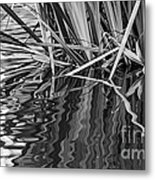 Reflections In Black And White Metal Print