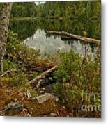 Reflections In Starvation Lake Metal Print