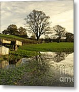 Reflections In The Flood  Metal Print