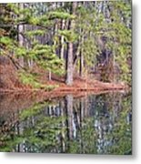 Reflections In The Pines Metal Print