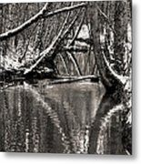 Reflections In The Snow Metal Print