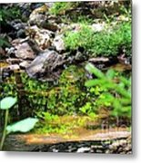 Reflections In The Stream Metal Print