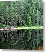 Reflections In Wtare Metal Print