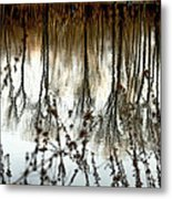 Reflections Metal Print by Joanne Beebe