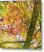 Reflections Of A Colorful Fall 001 Metal Print