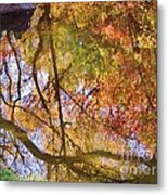 Reflections Of A Colorful Fall 002 Metal Print