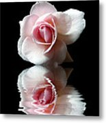 Reflections Of A Rose Metal Print