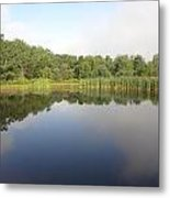 Reflections Of A Still Pond Metal Print