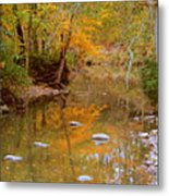 Reflections Of An Autumn Day Metal Print