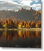 Reflections Of Autumn Metal Print