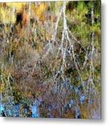 Reflections Of Fall 5 Metal Print