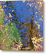 Reflections Of Fall Metal Print by Feva  Fotos