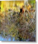 Reflections Of Fall1 Metal Print
