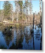 Reflections Of Maine Metal Print
