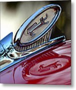 Reflections Of Pride Metal Print