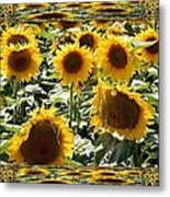 Reflections Of Sunflowers Metal Print