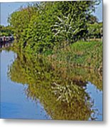 Reflections Of Trees Metal Print
