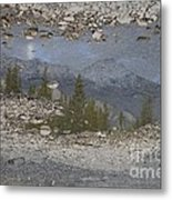 Reflections On A Mountain Stream Metal Print