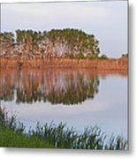 Reflections On A Summer Day Metal Print
