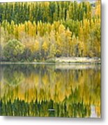 Reflections On The Columbia Metal Print