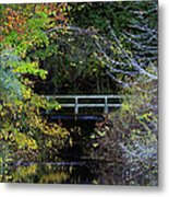 Reflective Fall Metal Print