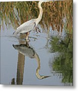 Reflective On Blue Metal Print