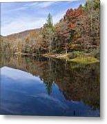 Reflection On Lake Winfield Scott 2 Metal Print