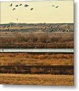 Refuge View 6 Metal Print
