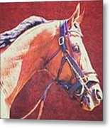 Regal Racehorse Metal Print