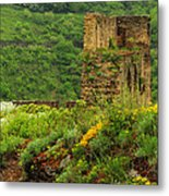 Reinfels Castle Ruins And Wildflowers In The Rhine River Valley 1 Metal Print