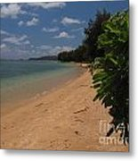 Relax For A Minute Metal Print