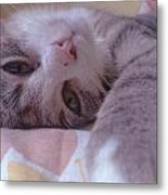 Relax Metal Print by Lucy D
