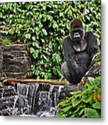 Relaxation Time Metal Print