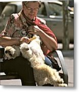Relaxed Dog Grooming Barcelona Style Metal Print