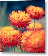 Release My Voice Metal Print