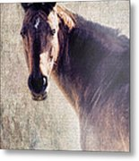 Reliability Metal Print by Betty LaRue