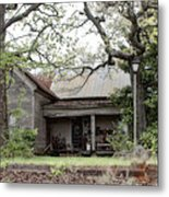 Relics  Metal Print by Tanya Jacobson-Smith