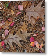 Remainders Metal Print