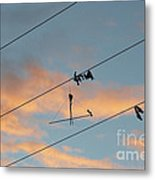 Remains Of Kite On The Electric Power Line Metal Print