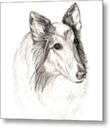 Remembering Maggie - A Tribute To A Collie Metal Print